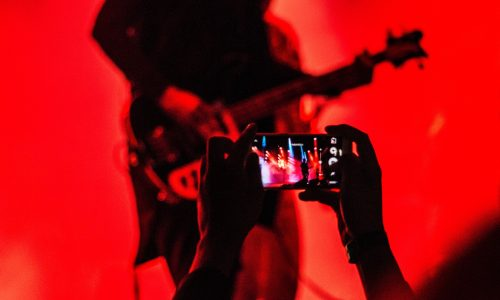 Red Lit Bassist | Kycker Article