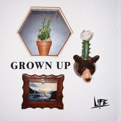 LIFE Grown Up Art | Kycker Review